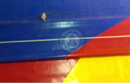 Training wrestling mat