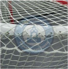 Professional net for hockey gate