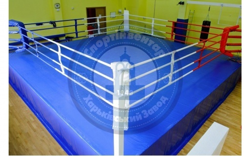 Professional ring on the platform 5x5 m