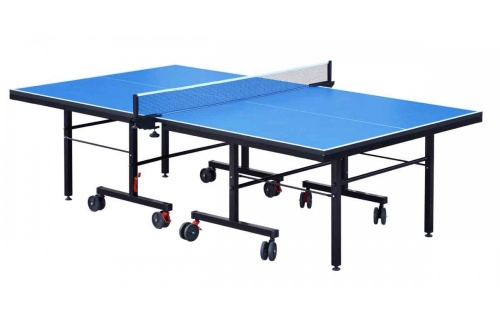 Tennis table professional